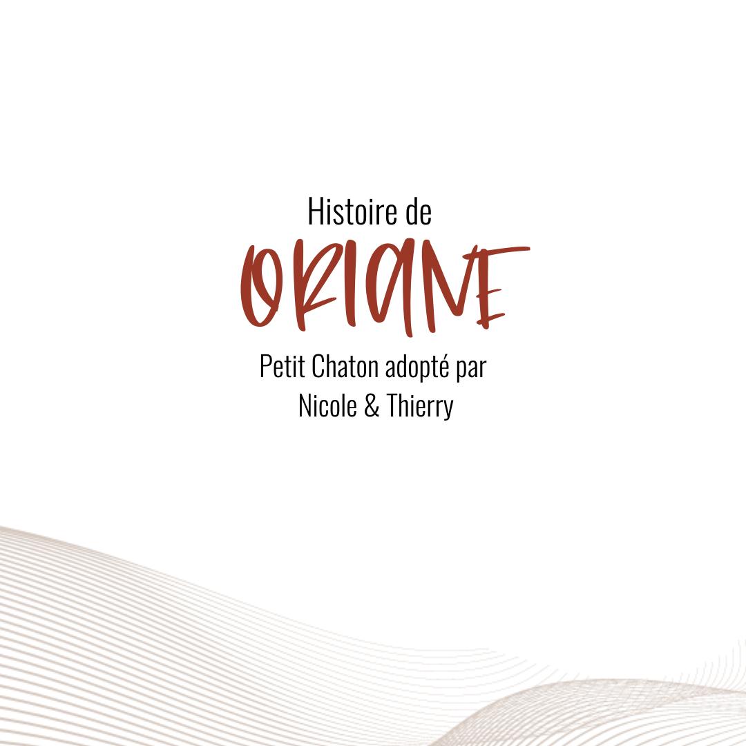 oriane , histoire adoption chaton