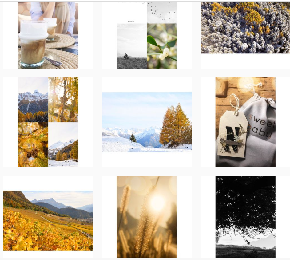 capture fil instagram narie-laure bollinger