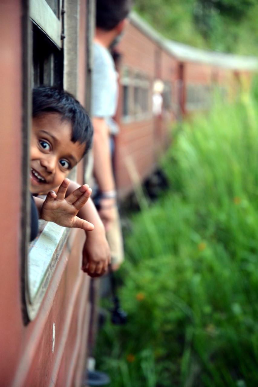 photo mini loup Sri lanka train